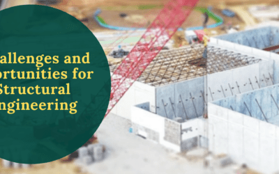 Challenges and opportunities for structural engineering